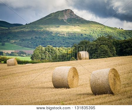 Summer Harvest with Roseberry Topping in the background North Yorkshire UK