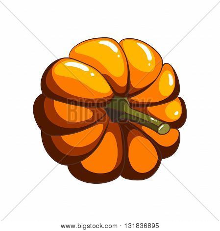 Hand drawn pumpkin in cartoon style on white background. Vector illustration.