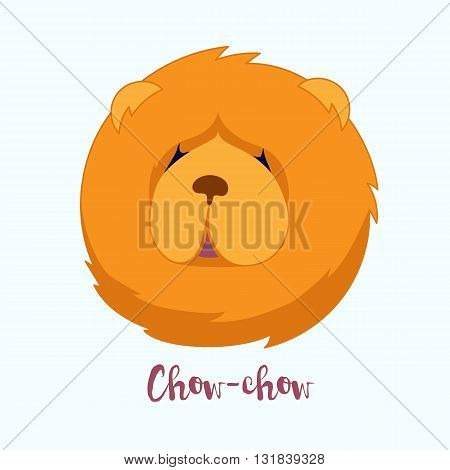 Vector dog Chow-chow icon flat design.Dog characters. Cartoon vector illustration handmade. Head dog. Icon with dog isolated on white background