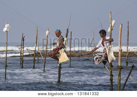 KOGGALA SRI LANKA - NOVEMBER 9 2014: Unidentified local fishermen are fishing in unique style. This type of fishing is traditional for South Sri Lanka in Indian ocean.