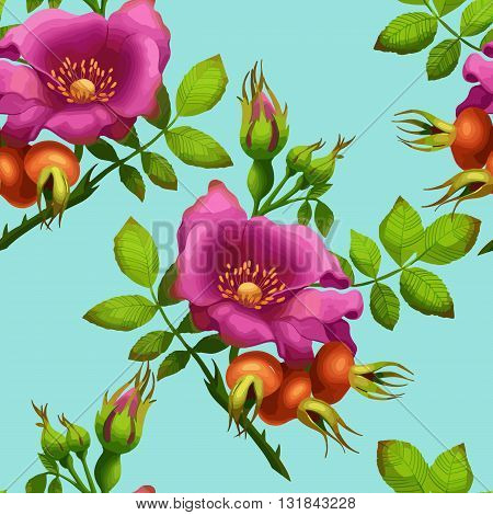 seamless pattern of bright wild rose on a blue background