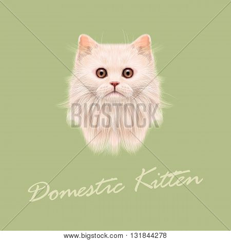 Vector Illustrated portrait of Domestic cat. Cute white fluffy face of kitten on green background.