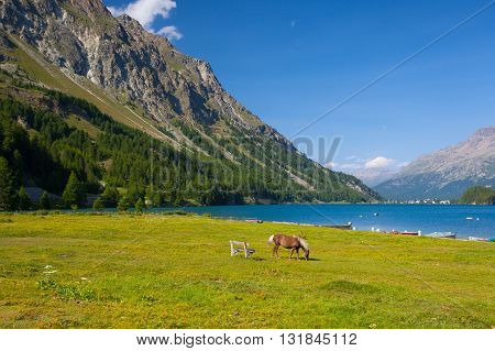 Lake Sils. It is a lake in the Upper Engadine valley Grisons Switzerland.