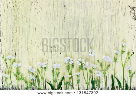 White Small Flowers On Wooden Background. Flat Lay.