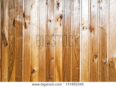 Sawn pine boards with a picture of a tree structure. The background image.