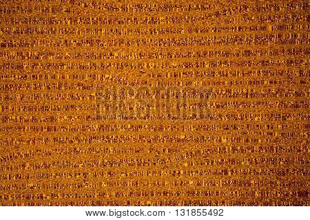 Abstract golden wall background texture, close up