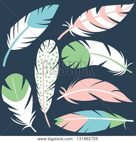 Colorful vector set with cute decorative bird feathers