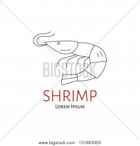 Shrimp vector flat line illustration isolated. Seafood line icon. shrimp logo template.