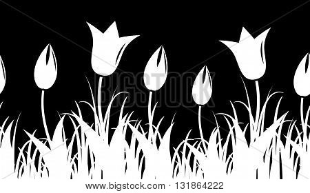 seamless vector tulips border isolated on black background
