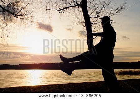 Man On Tree. Silhouette Of  Lone Man Sit On Branch Of Birch Tree At Sunset At Shoreline.