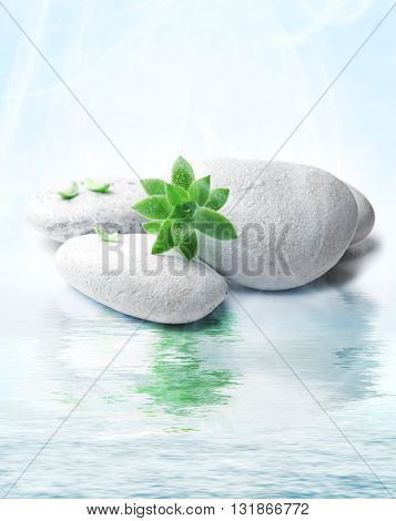 Stack of stones and a green flower,on water. Spa relaxation concept