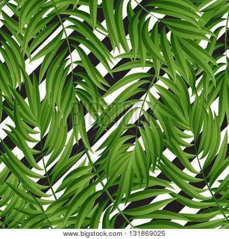 Tropical Palm leaves. Tropic palm. Tropical Palm leaf. palm summer tropical leaves. Tropic leaves frame.summer tropic palm leaves. Geometric pattern.