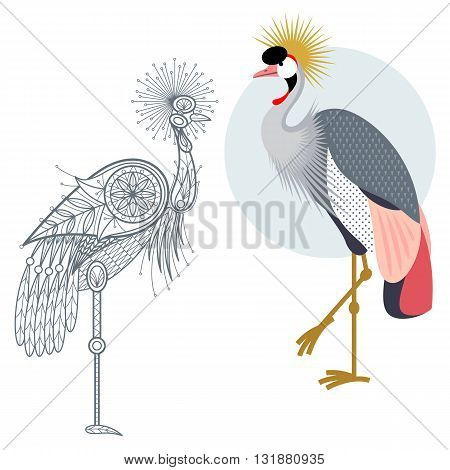 Bird Crowned crane. Flat icon and template for adult coloring zen tangle. Set of vector animals in different unusual style. Illustration collection of nature objects isolated on white background.