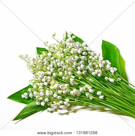 The branch of lilies of the valley flowers isolated on white background