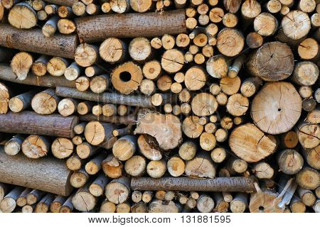 Stack of dry firewood.