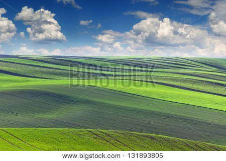 Amazing Landscape of fields in beautiful colorful and striped hills valley, spring season, Czech Republic, Europe