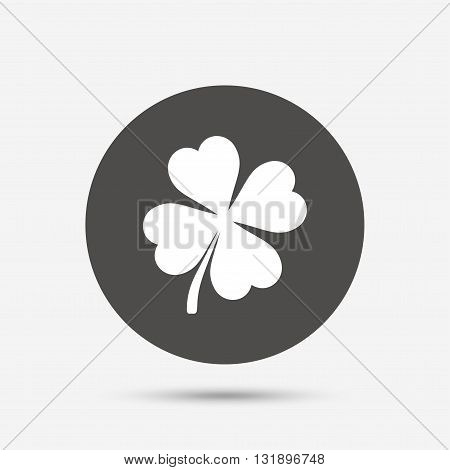 Clover with four leaves sign icon. Saint Patrick symbol. Gray circle button with icon. Vector