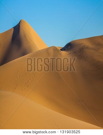 Hot and windy morning in the desert. The soft curves of yellow sand dunes. Hot autumn in Death Valley, California