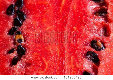 background or texture of watermelon macro shot