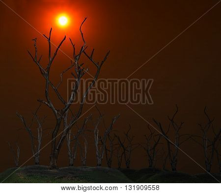Global warming concept. Dark and burned of dead tree on twilight sky with sunset background . Wildfires concept. Silhouette of dead tree.