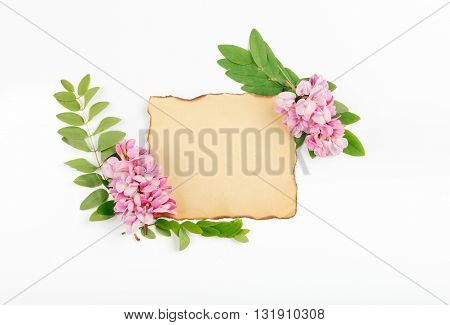 Acacia flowers with with leaves of acacia and vintage blank card on white background Top view. Flat lay