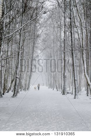 Woman with a dog on a snowy winter alley