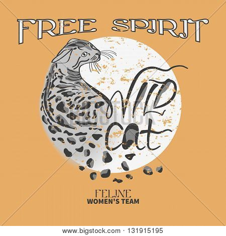 Wild cat print.Graphic Design with hand drawn unique typography - for t-shirt, fashion, prints or banner