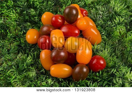 Selection Grade. Varieties Tomatoes On Green Grass