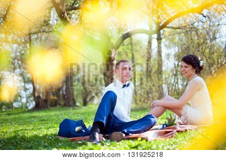 Wedding couple of bride and groom sitting on the meadow