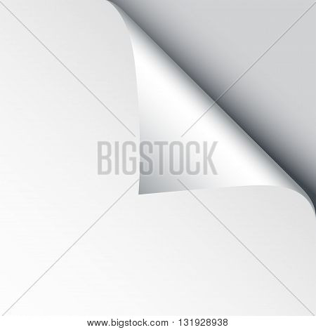 Blank sheet of paper with page curl and shadow design element for advertising and promotional message isolated on white background. EPS 10 vector illustration.