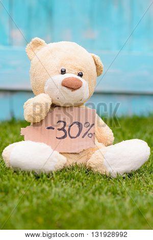 Teddy Bear Holding Cardboard With Information -30%