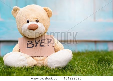 Teddy Bear Holding Cardboard With Information Bye