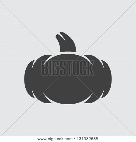 Pumpkin Icon Illustration