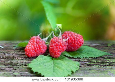Ripe organic juicy raspberries on wooden table