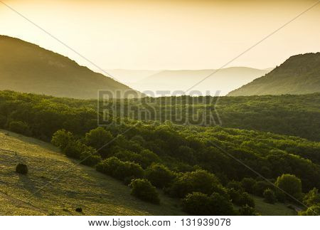 green forest covered mountains with yellow sunset fog