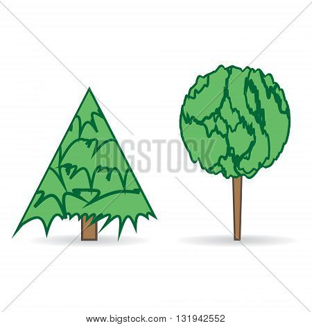 Two trees on white background. Vector illustration