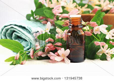 Apothecary Bottle of essential oil, fresh flower blossom, bathroom towel.