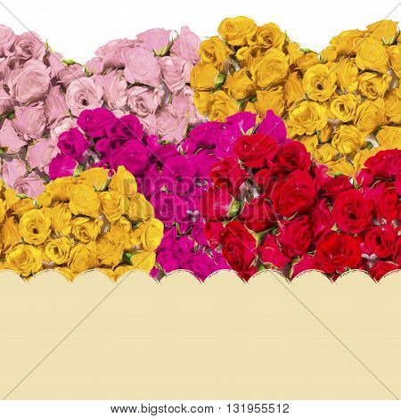 Greeting Card With Colorful Bouquets Of Roses