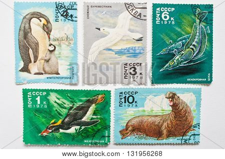 Uzhgorod, Ukraine - Circa May, 2016: Collection Of Postage Stamps Printed In Ussr Shows Animals From