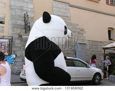 Lvov, Ukraine - June 4, 2015: Panda puppets entertains passers-by and tourists on a city street