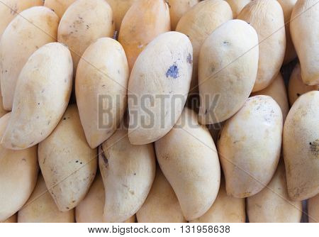 The yellow mango fruit background in the market