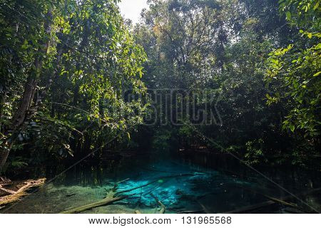 Blue Emerald Pond In The Forest