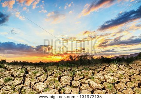 Concepts with sunset over cracks soil during the dry season