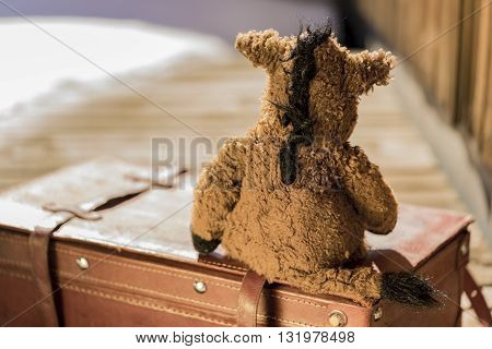 From behind view of heavily used horse plush toy sitting on old red leather briefcase over wooden deck