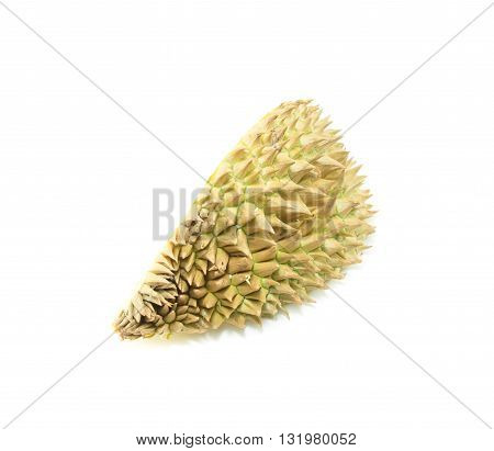 durian shell, Thorns of durian on white background