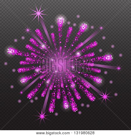 Set of Varisus Festive Firework Salute Burst on Transparent Background vector illustration