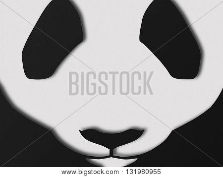 Image of Chinese Panda Bear. Cute bear snout.