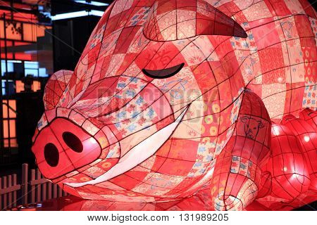 SYDNEY AUSTRALIA - 7 FEBRUARY 2016; The Pig one of the Chinese zodiac signs on display in Pitt Street Mall for Chinese New Year Celebrations. The pig is associated with sleeping eating clumsiness and laziness It can bring affluence and wealth to people