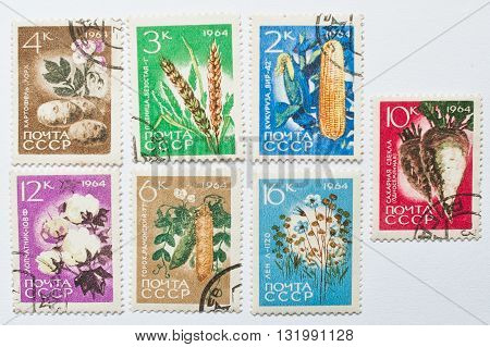 Uzhgorod, Ukraine - Circa May, 2016: Collection Of Postage Stamps Printed In Ussr Shows Different Ga