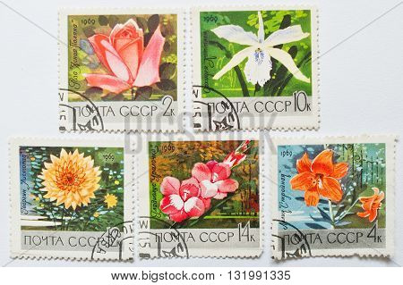 Uzhgorod, Ukraine - Circa May, 2016: Collection Of Postage Stamps Printed In Ussr, Shows Different F